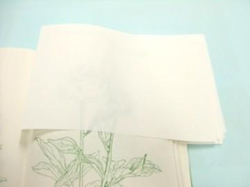 濡れた部分に紙を重ねていきます