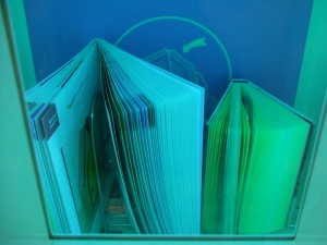 本も気持ちよさそうに風に吹かれております。
